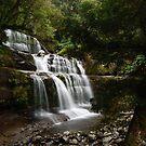 Liffey Falls by Kylie Reid