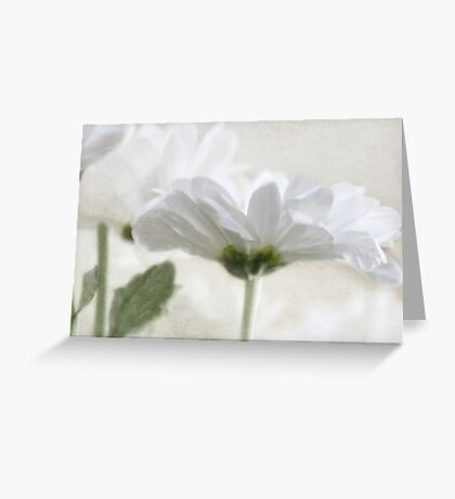 For Mothers Day Greeting Card