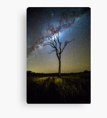 Flanagan Reserve Milky Way Canvas Print