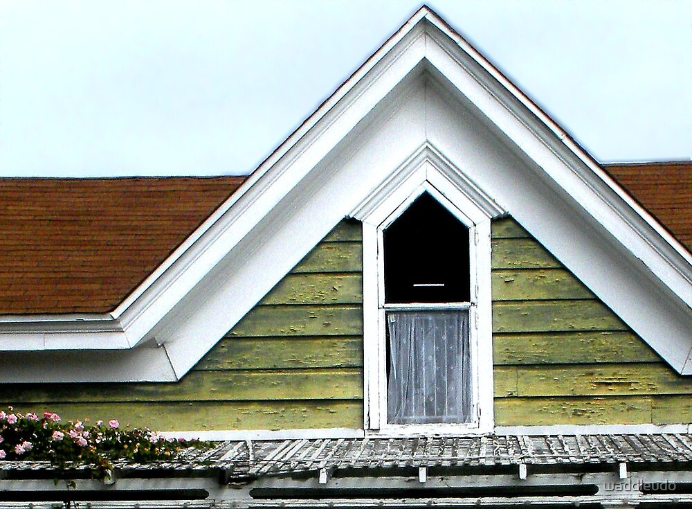 Cottage Roof by waddleudo