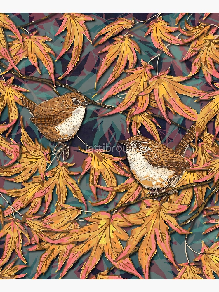 Garden Wrens by lottibrown