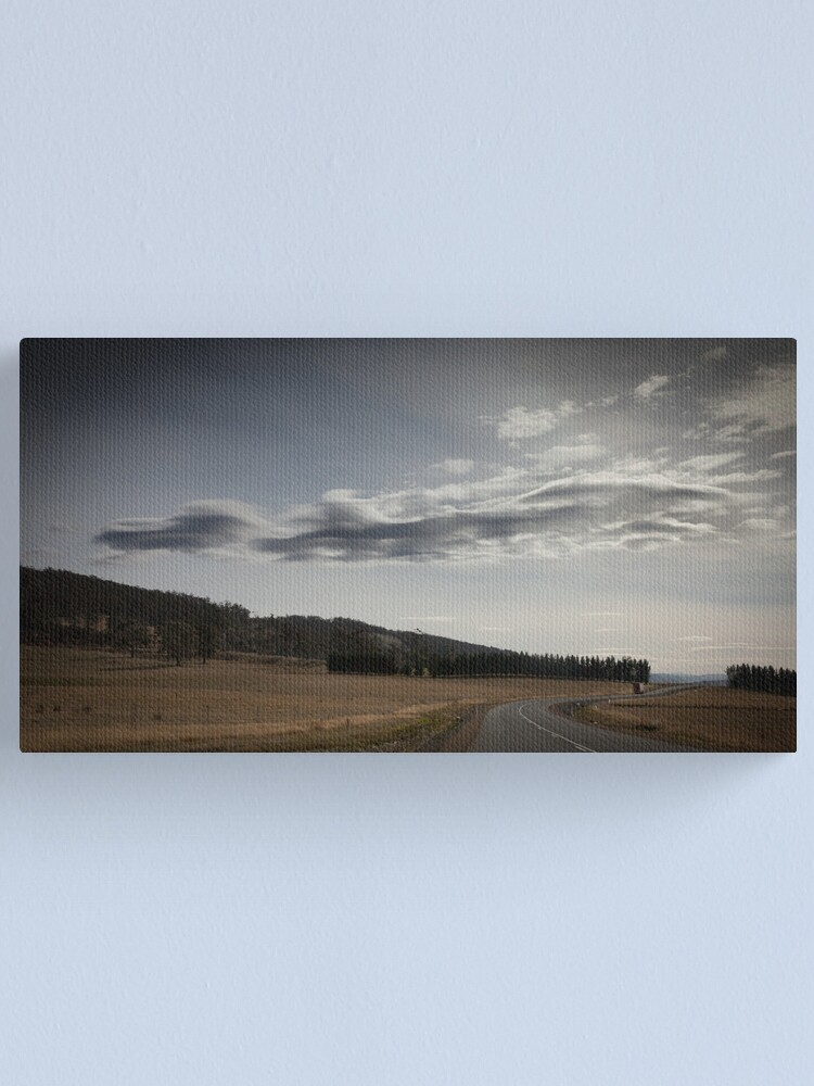Alternate view of Midlands asperatus Canvas Print