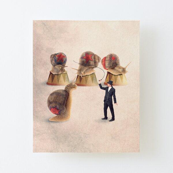 snail print Canvas Mounted Print