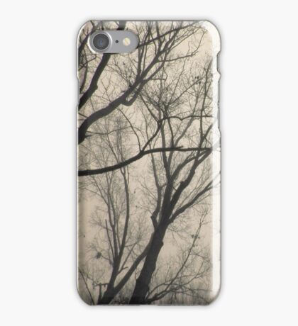 Trees Waiting for Winter iPhone Case/Skin