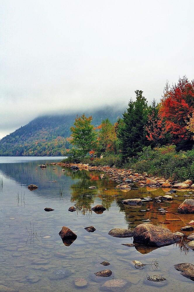 Jordan Pond, Acadia National Park, Maine, USA by fauselr