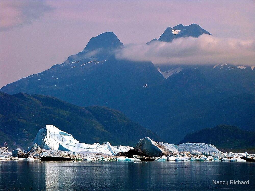 Alaska - Columbia Glacier by Nancy Richard