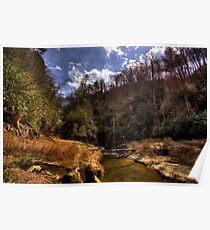 Laurel Creek at Jocassee Poster