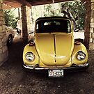 1970s VW Bug by kalikristine