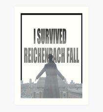 Reichenbach Fall Art Print