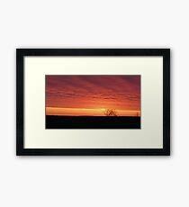 Blazing Plains Framed Print