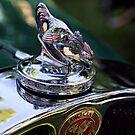 1931 American Austin Roadster by SuddenJim