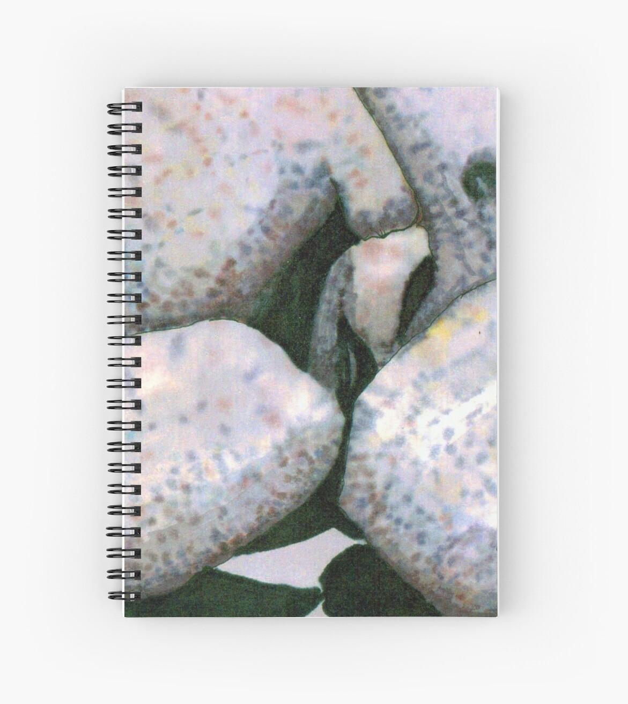Big Boulders by James Lewis Hamilton