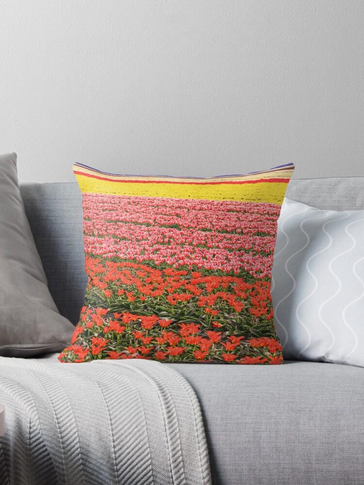Tulip fields 2 by Jasna