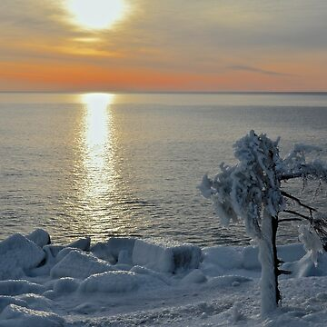 Sunrise After Snow and Ice by mdidrh