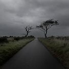 Lonely Road by George Crawford