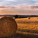 Haybales at Fawkham by Stuart  Gennery