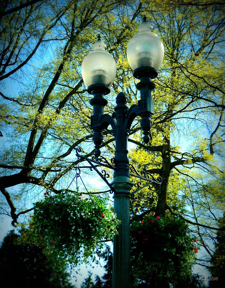 Lynden Lamps by kchase