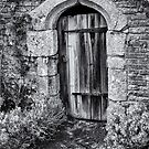 Secret Doorway by Stuart  Gennery