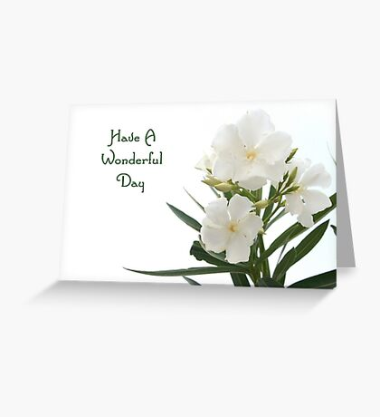 White Oleander Isolated Have A Wonderful Day Greeting  Greeting Card