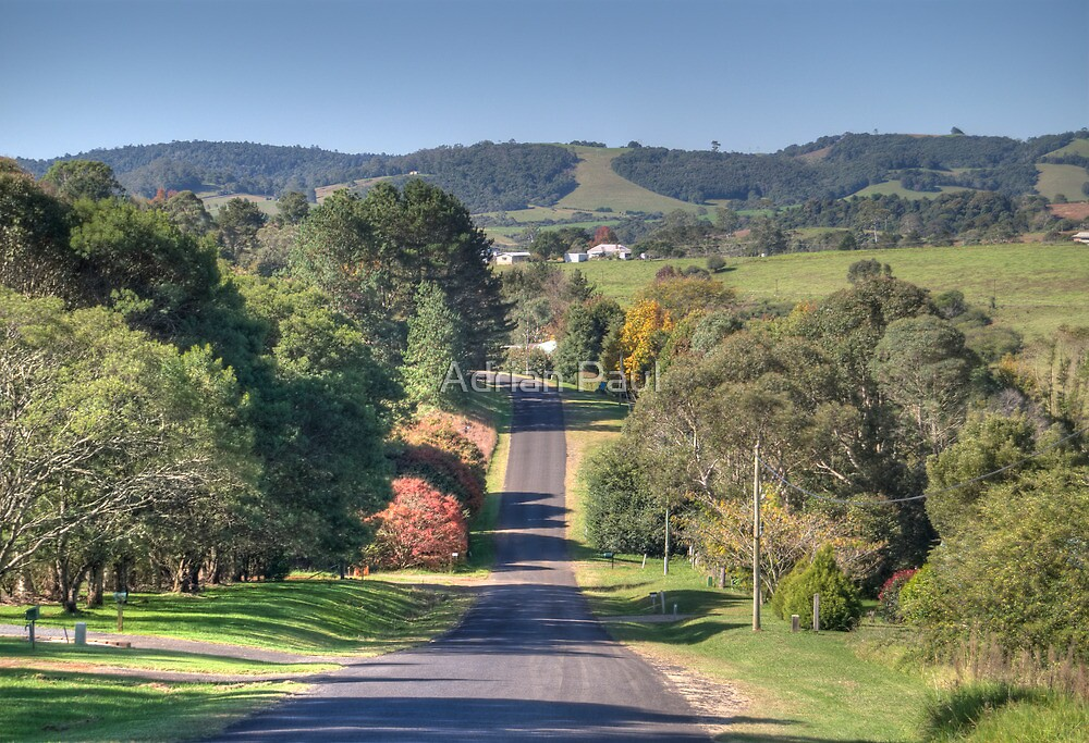 Country Road, Dorrigo, NSW by Adrian Paul