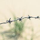Walking through barbed wire by heinrich