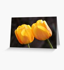 Tulips in Springtime Greeting Card