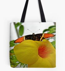 Mindo Butterfly Poses II Tote Bag