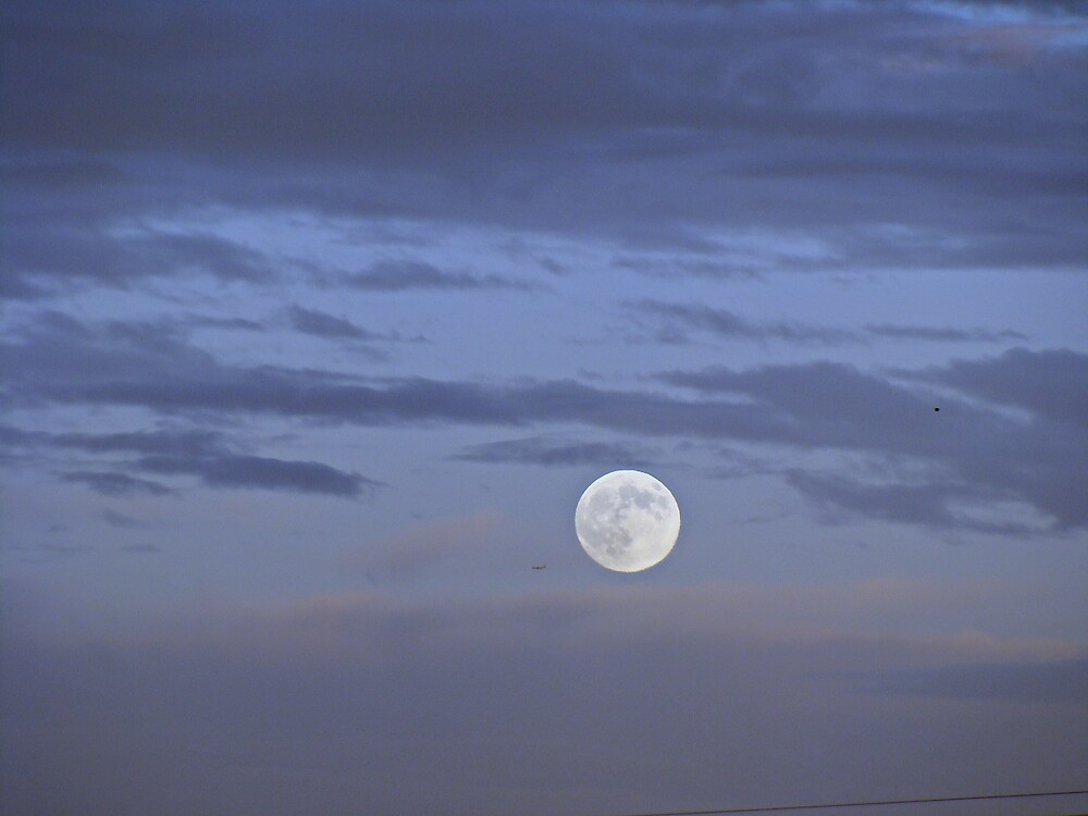 """Moonlight"" by Gail Jones"