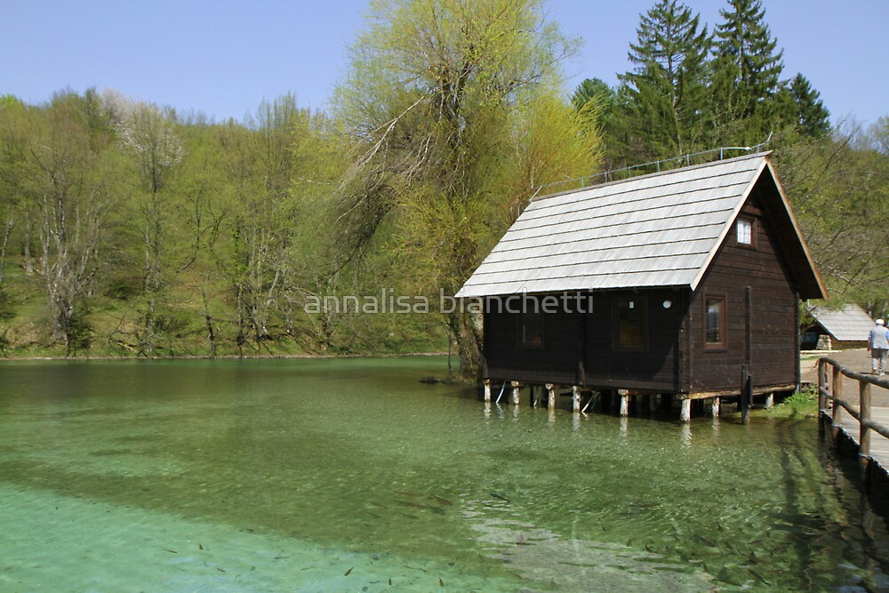 The house on the lake by annalisa bianchetti