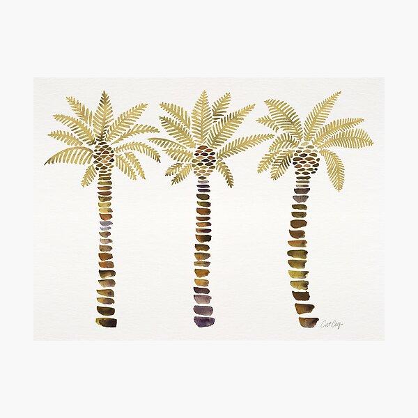 Mediterranean Palm Trees – Gold Palette Photographic Print