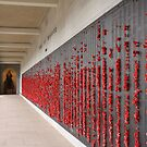 Wall Of Honour. by TJSphoto