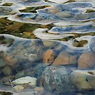 The Rock Pool by Emily McAuliffe