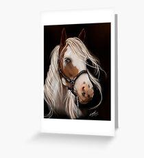 Soul Seeker Horse Art  Greeting Card