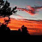 Frankston Sunset by margotk