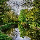Canal towpath walk by Martina Fagan