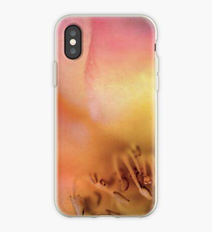 Dreamers Never Die iPhone Case
