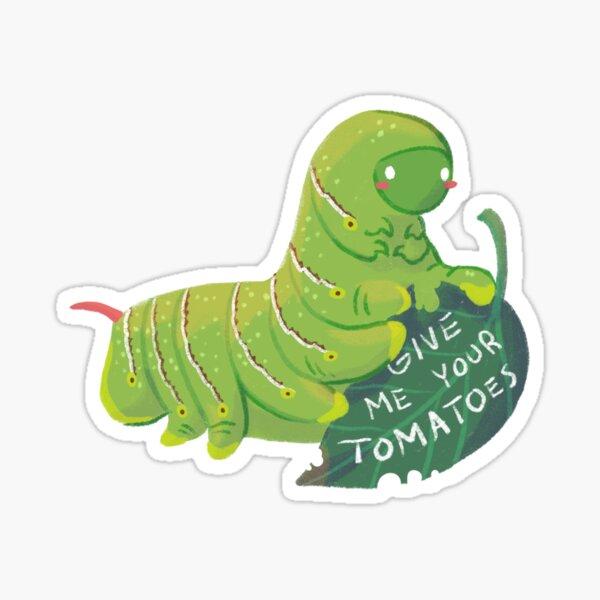 Tomato-loving caterpillar  Sticker