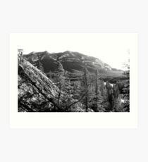 A View from Mount Rundle Art Print