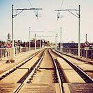 Luas line, Dublin by Alessio Michelini