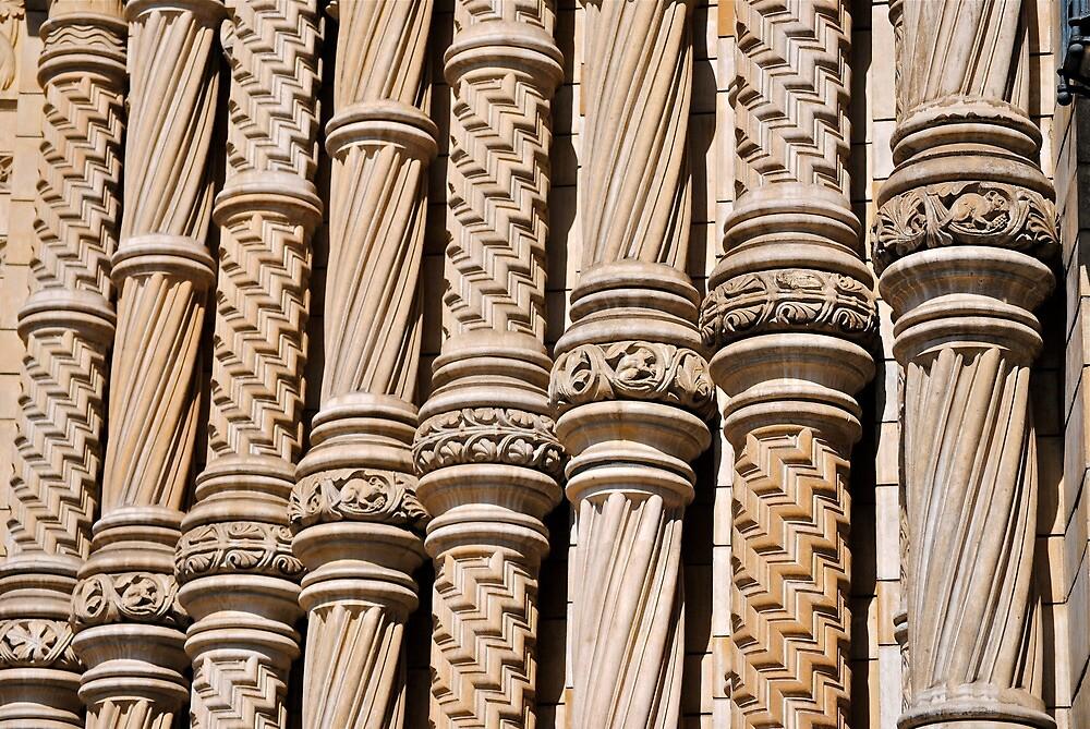 columns  by richard  webb
