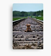 Nothing ahead…. Nothing behind… just here and now. Canvas Print