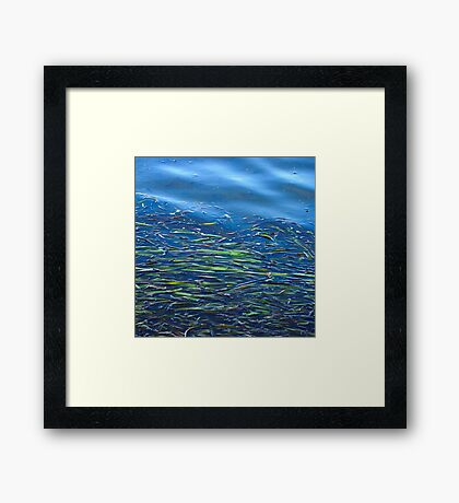 Blues and Greens Framed Print