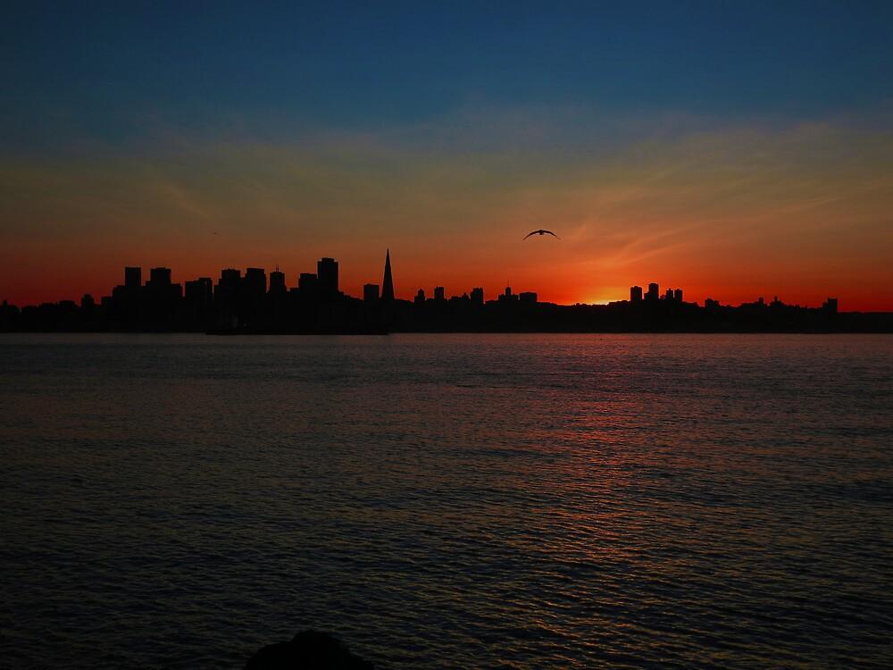 San Francisco Sunset by David Denny