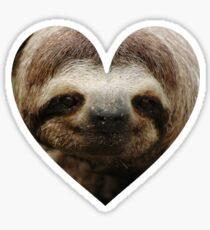 Sloth Love Sticker