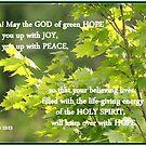 Romans 15:13 by Paula Tohline  Calhoun