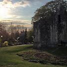 Medieval Ruins by Talia Felix