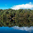 Pieman River, Corinna, Tasmania by SusanAdey