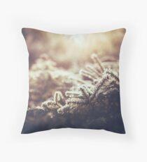 Hint of winter Throw Pillow