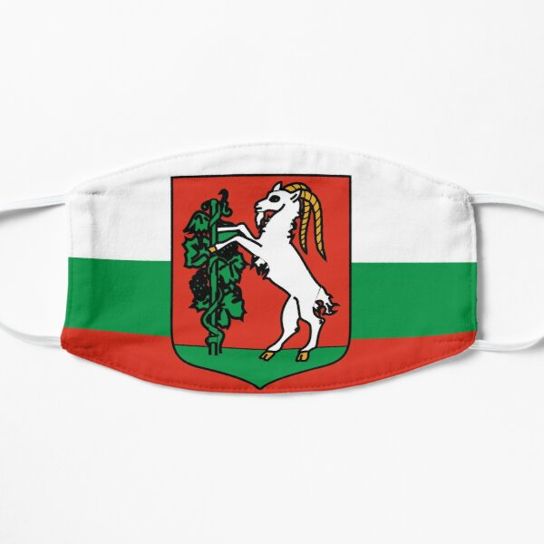 face mask with the flag of  Lublin Poland Flat Mask