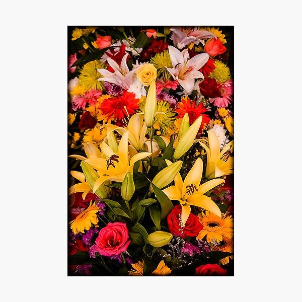 Cambodian Flower Arrangement Photographic Print
